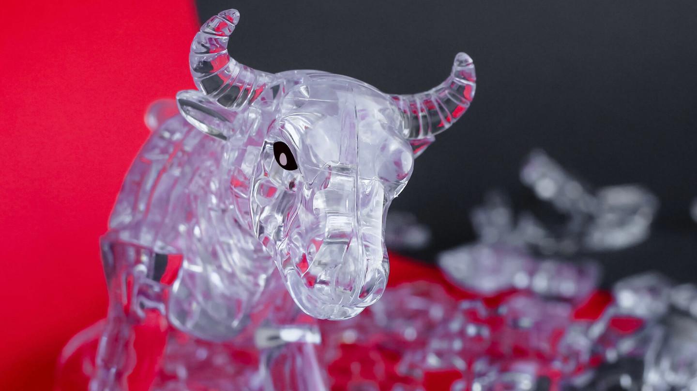 fragile-bull